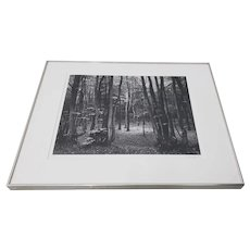 "Bruce Barnbaum ""North Downs Forest, England"" Black & White Photograph c.1980"
