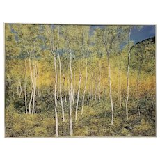 """Large Scale """"Fall Colors of a Birch Forest"""" Original Painting by Kirchgessner 20th C."""