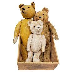 The Three Bears - Family of Stuffed Bears - Possibly Steiff