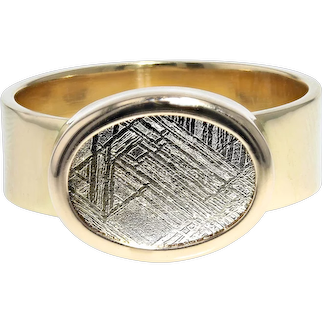 OOAK Meteorite Slice Ring