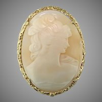 Extra Large Shell Cameo 14K Pendant/Brooch