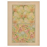French Art Nouveau c1900 floral lithograph