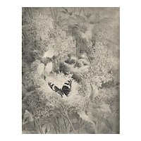 Matted C1880s French Botanical Lithograph With Birds, Butterfly,Lilacs