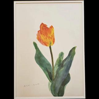1939 French Vintage Botanical-TULIP
