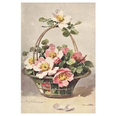 c1880 Vintage French Botanical Chromolithograph-Flower Basket