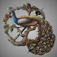 Superb Victorian Sterling & Enamel Peacock Brooch