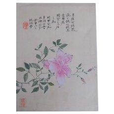 Antique Chinese Watercolor Album Leaf Shanghai 海派