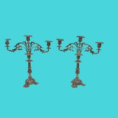 Pair of Portuguese Silver Cast Candelabra