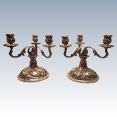 Pair of German Silver Candelabra With Foliage Pattern