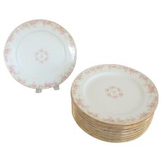"""10 GOA Ch. Field Haviland Limoges Pink Fruit Blossom 8-1/2"""" Luncheon or Salad Plates"""