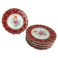8 Czechoslovakia Floral Dinner Plates with Crimson Red and Gilt Border