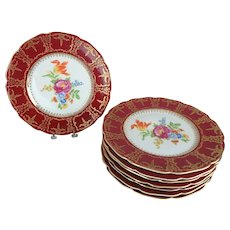 8 Czechoslovakia Floral Dinner Plates with Crimson Red and Gilt Border