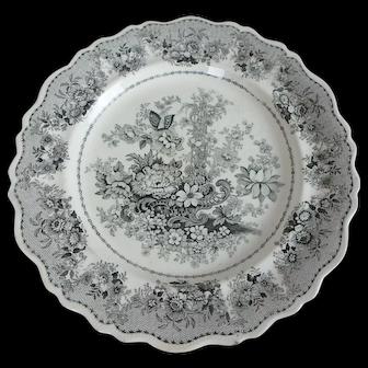"19th C. Clews Tuscan Rose English Black Transferware 10-1/2"" Dinner Plate"