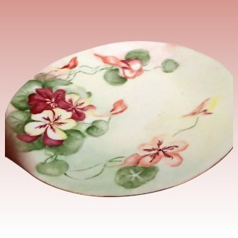 Nasturtium Blooms on China Plate
