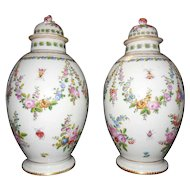 Pair of Bristol Style Porcelain Tea Canisters