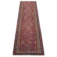 Antique Northwest Persian Runner 12.8x3.1 ,  Oriental Rug  circa 1900