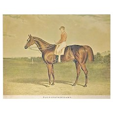 Antique Derby Winner Horse Engraving