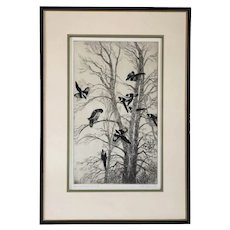GENE KLOSS Etching and Drypoint on Paper, Magpies and Red-Tailed Hawk II, 37/50