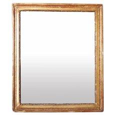 French Gilt Gesso Rectangular Mirror