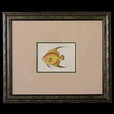 FREDERICK P. NODDER Hand Colored Copperplate Engraving, Orange Angel Fish, Plate 914