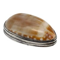 American Silver Mounted Cowrie Shell Snuff Box