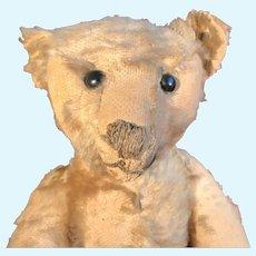 """A 16"""" blonde Steiff teddy bear"""
