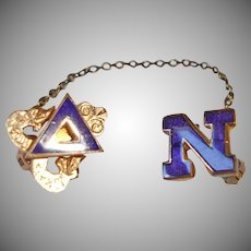 40% off - Vintage  Delta Nu Pledge Pin -  College Greek System Sorority Pin