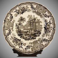 Stunning Aesthetic Brown Transferware Morea China Plate C. 1840's