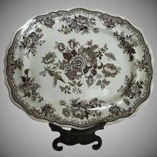 Asiatic Pheasants Brown Transferware Platter A. Shaw 1860
