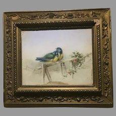 Original Pastel Blue Tits on Fence Ornate Gilt Wood Frame