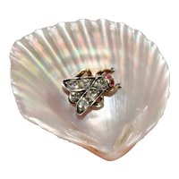 Fine Antique Shell And Diamond Fly Brooch Pin Circa 1870-1880