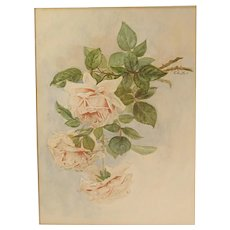 Antique Watercolor Painting of Pink & White Roses Still Life Signed