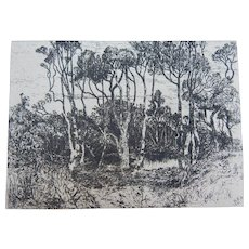 """Antique Etching by Mary Nimmo Moran """"Solitude"""" 1880"""