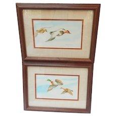 Pair Craig Peterson Watercolor Paintings of Ducks Signed Vintage