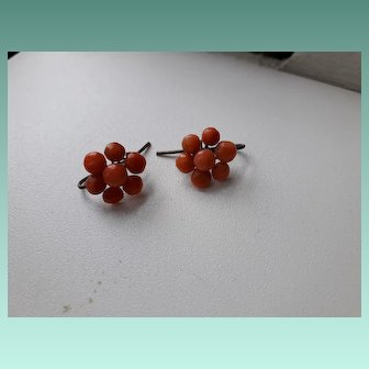 Mellow Antique Georgian Natural Coral Cluster Hook Earrings