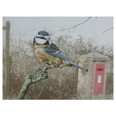 Bird painting...Bluetit watercolor...Painting of a bird...
