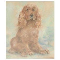 Dog..Spaniel...Dog painting...Pastel painting of a dog...