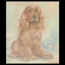 Dog..Spaniel...Dog painting...Pastel painting of a dog...
