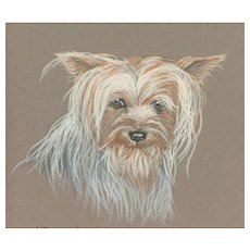 Yorkshire Terrier...Yorkie...Dog painting...Dog pastel...