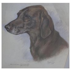 Dog painting. Marjorie Cox. Pittlea Chukar. Pastel painting Labrador.
