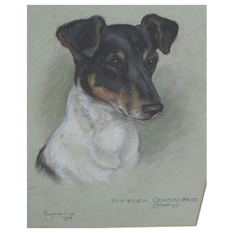 Dog painting. Marjorie Cox. Terrier Dog pastel painting.