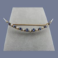 Vintage 14 Karat Sapphire and Pearl Pin
