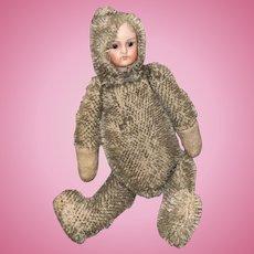 Antique German Mohair Bisque Head Teddy Baby Bear