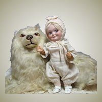 "9"" German Googly Demalcol with bisque head and toddler body 1925 Ca ~~ Layaway ~~"