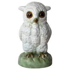 Vintage Porcelain Owl Night Lamp, early 20th. century.