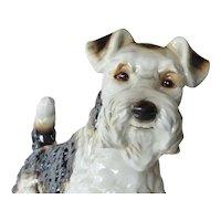 Goebel vintage  large porcelain Airedale terrier.
