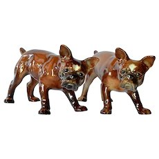 Wagner & Apel, pair porcelain French Bulldogs, 1940s.