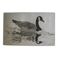Vintage Etching of Canadian Goose Family – Siblings
