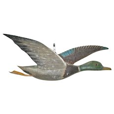Early 20th Century Flying Mallard Drake Plaque.