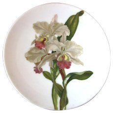 Vintage Hand Painted Cabinet Plate - Orchids